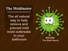 How To Clean Mold In Bathroom Diy How To Remove Mold