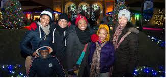 holiday magic festival of lights 2017 holiday magic brookfield zoo s lights festival stylechicago com