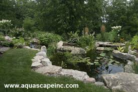 Aquascape Inc Aquascape Your Landscape A Boring Backyard Is Transformed With