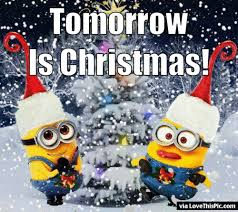 tomorrow is christmas animated minion quote pictures photos and