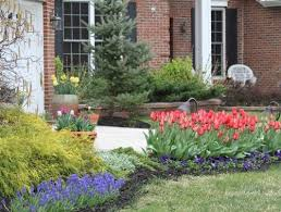 landscaping with spring blooming bulbs