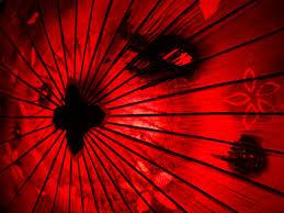 free images light sunlight flower petal line red umbrella