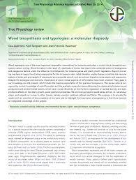 hã ngelen design wood biosynthesis and typologies a molecular rhapsody pdf
