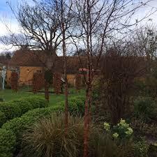 blog blossoming gardens