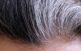 what is the best way to cover gray hair bellatory the best way to conceal gray roots based on your hair color