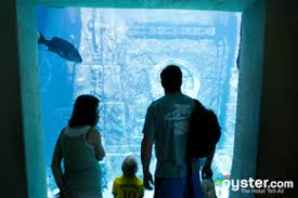 the 6 best kid friendly hotels in the bahamas oyster com