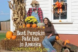Burts Pumpkin Farm 2015 by Best Pumpkin Patches In America Super Coupon Lady