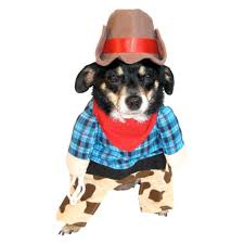 halloween for dogs costumes amazon com cowboy dog costume cow boy pet with hat xxs