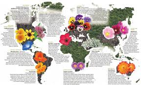 Colorado Fall Colors Map by Plant A World Of Flowers Yes And They Can Be Drought Tolerant