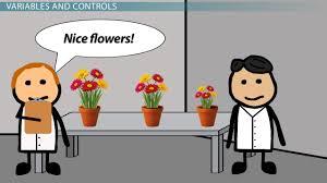 variables u0026 controls in a science experiment video u0026 lesson