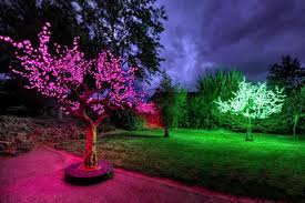 home led trees of light