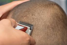 Average Hair Loss Per Day The Head Shaving Process And The Maintenance Of A Shaved Head