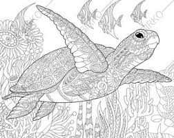 1 coloring page of ocean crab from coloringpageexpress shop hand