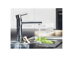 grohe faucets kitchen grohe faucets partshower faucet ladylux plus diagram high end