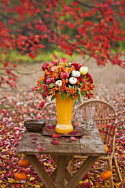 best 25 autumn garden ideas on pinterest autumn nature autumn