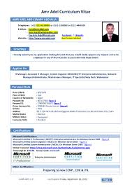 Curriculum Vitae Sample Format Pdf by Resume For System Administrator In Windows Free Resume Example