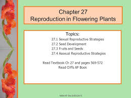 Reproduction In Flowering Plants - chapter 27 reproduction in flowering plants ppt video online