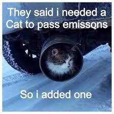 Slammed Car Memes - car shows uk on twitter a hahahaha ohsoretro cat catback