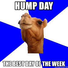 Hump Day Camel Meme - hump day the best day of the week classics camel meme generator