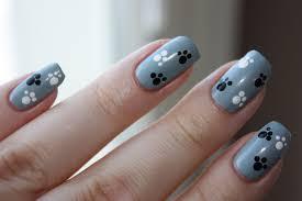 paw print nail art image collections nail art designs