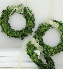 preserved boxwood wreath preserved boxwood wreath 8 home decorative accents