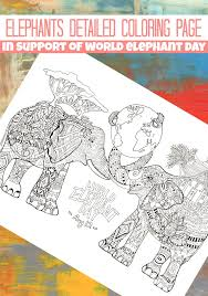 detailed elephants coloring trail colors