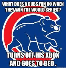 Cubs Fan Meme - 19 best choke cubs choke images on pinterest bear cubs chicken
