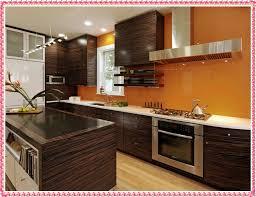 orange kitchen cabinets extraordinary kitchen cabinet colors new decoration designs