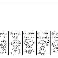 Les 5 sens collecte sur Internet  la maternelle de Camille