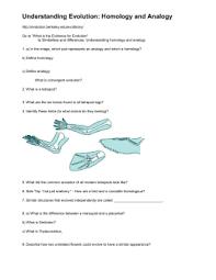 evolution homology and analogy