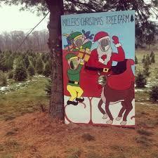 miller u0027s christmas tree farm christmas trees 760 new