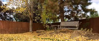 landscaping kennewick wa landscaping lawn care tree removal hardscaping yakima wa
