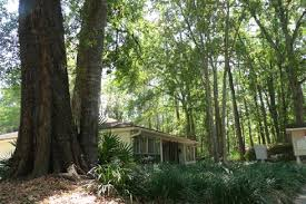 creekwood apartments in gainesville quiet country living close