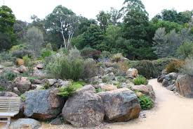 native plant landscaping ideas remarkable australian native garden design ideas australian garden