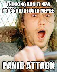 Funny Stoner Memes - thinking about new paranoid stoner memes panic attack paranoid