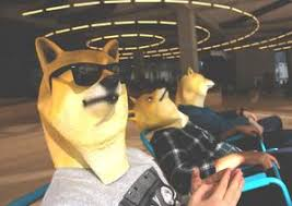 Doge Halloween Costume Doge Mask Dot Cool