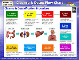 how to detox to reverse type 2 diabetes ex diabetic author