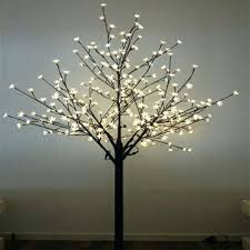 led trees suipai me