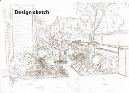 from the drawing board front garden in wandsworth 9 months on