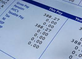 how to make a pay stub as an employer or a contractor