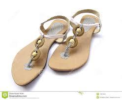 Footwear Ladies Footwear Royalty Free Stock Image Image 8737986
