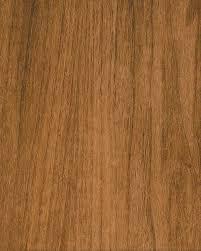 sanfoot wood veneers species