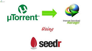 how to torrent files with idm seedr nairatips