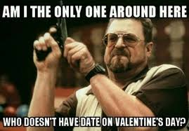 Funny Single Valentines Day Memes - 20 funny valentine s day memes for singles sayingimages com