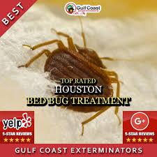 Treatment For Bed Bugs Pest Control Houston Gulf Coast Exterminators Save U0026 Time
