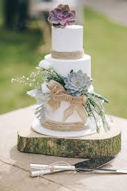 the 25 best succulent wedding cakes ideas on pinterest