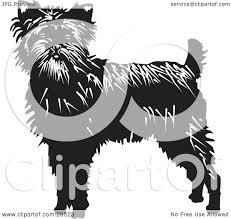affenpinscher monkey dog clipart illustration of an alert affenpinscher dog looking front