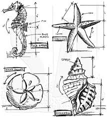 Buy Blueprints Tim Holtz Cling Mount Stamps Nautical Blueprint Cms194