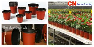 plastic flower pots supplier from china cn custom thermoforming