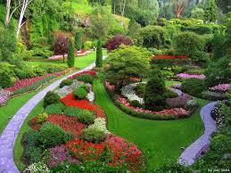 Creative Backyard Backyard Garden Design Home Design